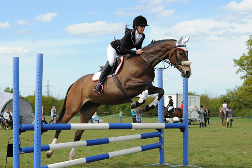 Equestrian Event Photographer Ards Photographic